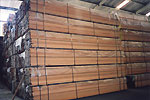 Timber packed in plastic sheets, ready for export