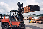 Fork lift moving timber at our timber terminal