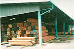 Timber stacked at our timber terminal, ready for export